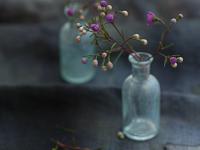 small-vintage-bottle.png (PNG Image, 720×572 pixels)
