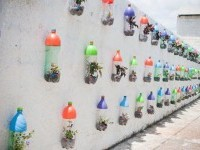 DIY PET Bottle Garden DIY Projects | UsefulDIY.com