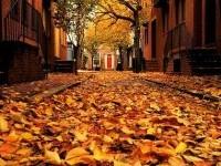 Philadelphia in the fall | Fall