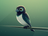 Bird by Mikael Gustafsson