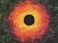 I need a guide: andy goldsworthy