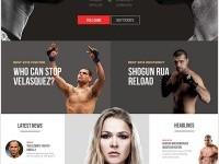 UFC New Visual Concept by João Paulo Teixeira | Inspiration DE