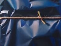 Yrjö-Edelmann51-650x858.jpg (JPEG Image, 650×858 pixels)