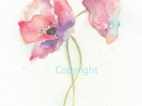 Fine art watercolor painting, flower art, POPPY WATERCOLOR PRINT, gic…