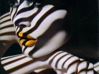 Pin de Venetza Ramirez en Photography | Pinterest