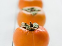 Everything Persimmon! — The Forgotten Garden