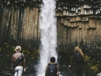 Svartifoss Waterfall / Southern Iceland. on Inspirationde