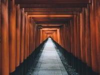 Kyoto by Merlin Kafka - Photo 125967669 - 500px