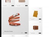 Web | Hermès Concept on