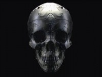 Skull by Mark Kent - From up North