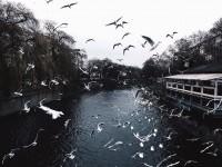 Stunning Instagrams by Konrad Langer