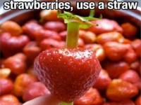 Great Life Hacks : theBERRY