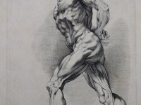 peter paul rubens figure drawings - Google Search