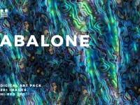 Abalone – HLOMRT