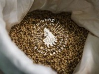 FILIDORO - Argentinian Brewery on