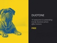 Free Duotone Photoshop Action - Free Download | Freebiesjedi