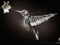 Tag Heuer: Bird | Ads of the World™