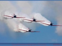 Aeroshell T-6s at Sun 'n Fun,...: Photo by Photographer Rick Du Boisson - photo.net