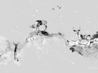 Aria Desktopography 2010 on